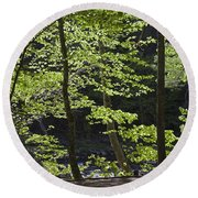 Forest Cathedral Round Beach Towel