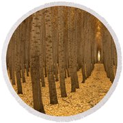 Forest Cathedral - One Round Beach Towel