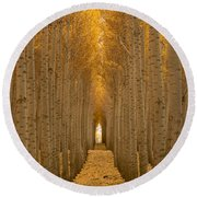 Forest Cathedral - Two Round Beach Towel