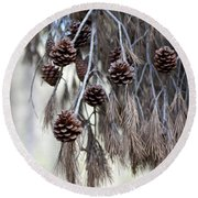 forest decoration - A pine tree give us a natural autumn decoration  Round Beach Towel