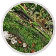 Forest Floor Fungi And Moss Round Beach Towel