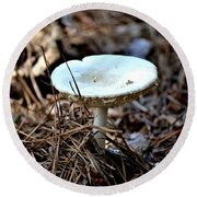 Forest Fungus Round Beach Towel