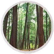 Forest In Early Morning, Wetlands Round Beach Towel