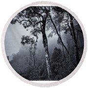 Forest In The Fog Round Beach Towel
