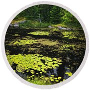 Forest Lake With Lily Pads Round Beach Towel
