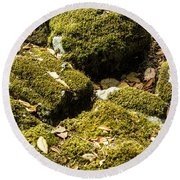 Forest Moss Round Beach Towel