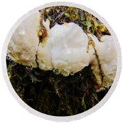 Forest Mushroom Trio Round Beach Towel