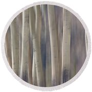 Forest Of Dreams 2  Panorama Round Beach Towel