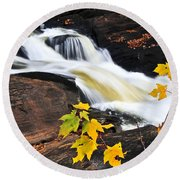 Forest River In The Fall Round Beach Towel