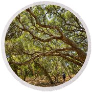 Forest Stroll - The Magical And Mysterious Trees Of The Los Osos Oak Reserve. Round Beach Towel