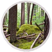 Forest With Moss-covered Rocks Along John's Lake Trail In Glacier Np-mt Round Beach Towel