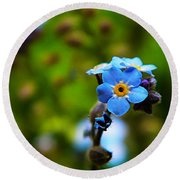 Forget Me Not Bloom Round Beach Towel