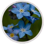 Forget Me Not Flower Round Beach Towel