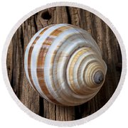 Found Sea Shell Round Beach Towel by Garry Gay