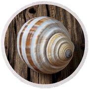 Found Sea Shell Round Beach Towel