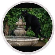 Fountain Cat Round Beach Towel