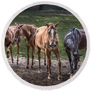 Four Horses E137 Round Beach Towel