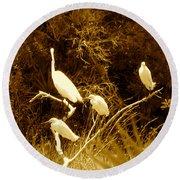 Four Resting Egrets Round Beach Towel