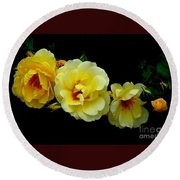 Four Stages Of Bloom Of A Yellow Rose Round Beach Towel