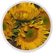 Four Sunflowers Round Beach Towel