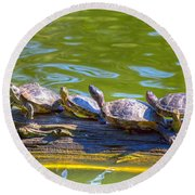 Four Turtles Round Beach Towel