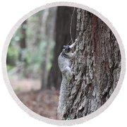 Fox Squirrel Vertical Round Beach Towel