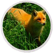 Fox Trot Round Beach Towel