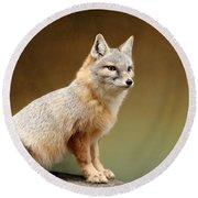 Foxes Round Beach Towel