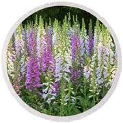 Foxglove Garden In Golden Gate Park Round Beach Towel