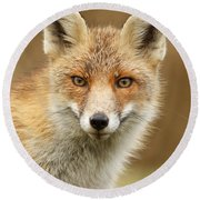 Foxy Face Round Beach Towel by Roeselien Raimond
