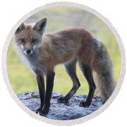 Foxy Lady Round Beach Towel