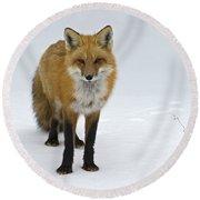 Foxy.. Round Beach Towel