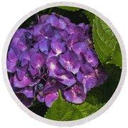 Framed Purple Blue Hydrangea Blossom Round Beach Towel