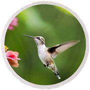 Free As A Bird Hummingbird Round Beach Towel