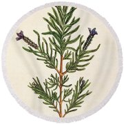 French Lavender Round Beach Towel