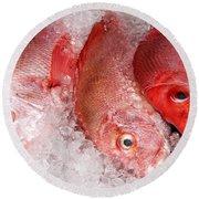 Fresh Fish 05 Round Beach Towel