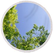 Fresh Foliage Round Beach Towel