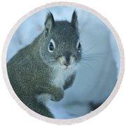 Friendly Squirrel Round Beach Towel