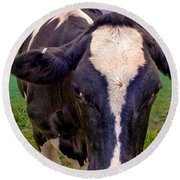 Friesian Round Beach Towel
