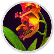 Frilly  Red And Yellow Orchids Round Beach Towel