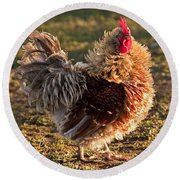 Frizzle Rooster Round Beach Towel