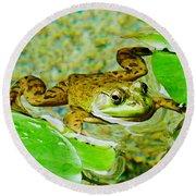 Frog  Abby Aldrich Rockefeller Garden Round Beach Towel