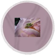 Frog And Rose Photo 1 Round Beach Towel