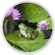 Frog And Water Lilies Round Beach Towel