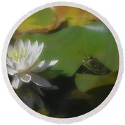 Frog And Water Lily Round Beach Towel