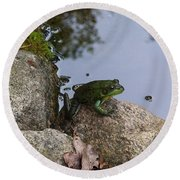Frog At Edge Of Pond Round Beach Towel
