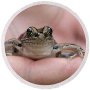 Frog Round Beach Towel