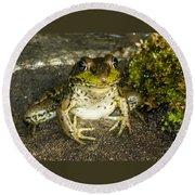 Frog Pose Round Beach Towel