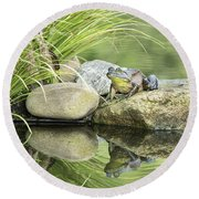 Bull Frog On A Rock Round Beach Towel