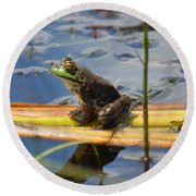 Froggy Reflections Round Beach Towel